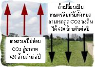 เกษตรอินทรีย์พลังชีวภาพ_พลังชีวภาพกับการเกษตร 007