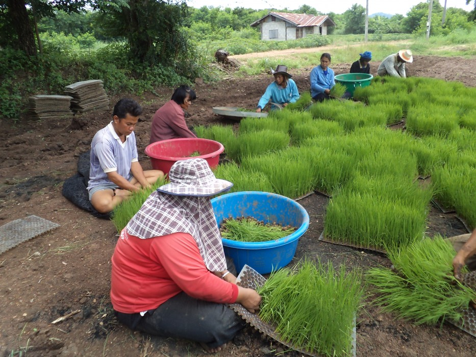ส่งเสริมการศึกษา วิจัย ฝึกอบรม มุ่งศึกษาและเผยแพร่นวัตกรรมที่ช่วยลดปัญหาโลกร้อนและสภาพภูมิอากาศแปรปรวนด้วยเทคโนโลยีที่ง่ายที่สุดและราคาถูกที่สุดที่มนุษย์มีอยู่ในปัจจุบัน คือการทำเกษตรที่เป็นมิตรกับระบบนิเวศและสภาพภูมิอากาศ  และเผยแพร่ความรู้สู่วิถีการดำเนินชีวิตที่เอื้อต่อสุขภาวะที่สมบูรณ์ทั้งร่างกาย จิตใจ สังคม ปัญญา และสิ่งแวดล้อมอย่างยั่งยืน  ช่วยลดปัญหาความยากจน ยกระดับคุณภาพชีวิตตามแนวทางเศรษฐกิจพอเพียง ต้นแบบการทำเกษตรอินทรีย์พลังชีวภาพ และเป็นเครือข่ายศูนย์การเรียนรู้ทางไกลเศรษฐกิจพอเพียง ม.สุโขทัยธรรมธิราช